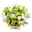 Fresh Flowers with Next Day Delivery